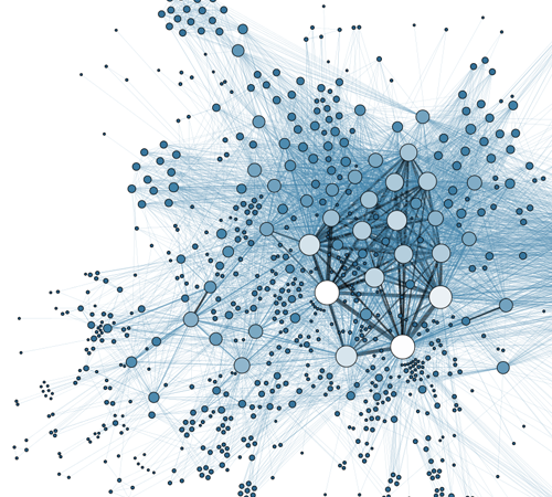 Optimal learning Paths in Information Networks